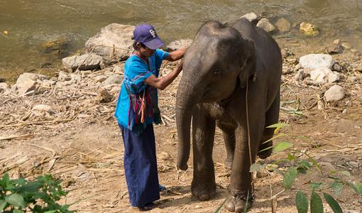 Thailand-4