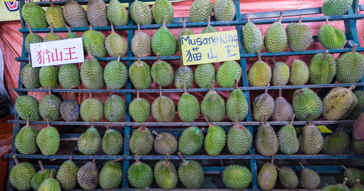 durian-11