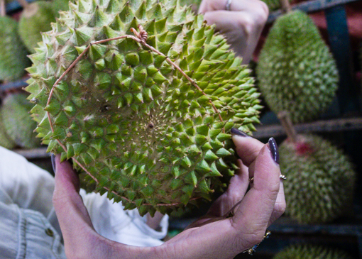 durian-12