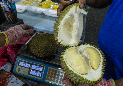 durian-7