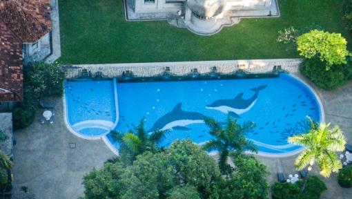 dolphin pool-1.jpg